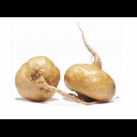 Экстракт маки 5% Фитостерол