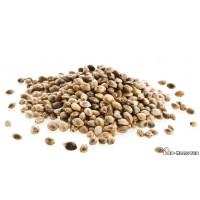 Конопли семена